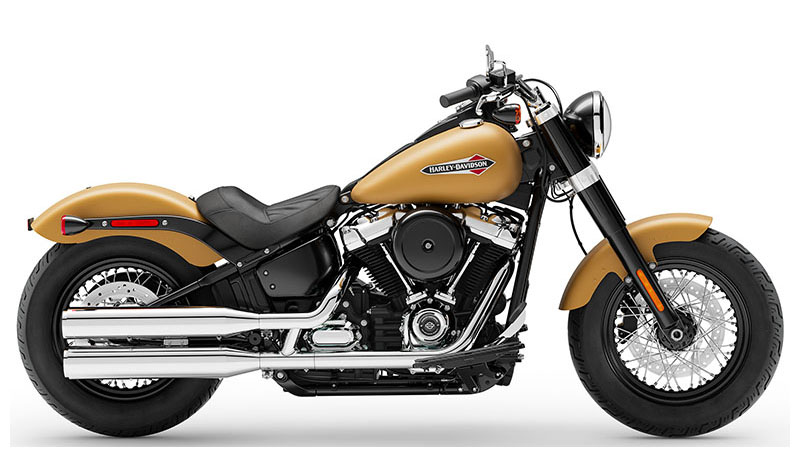 2019 Harley-Davidson Softail Slim® in Mauston, Wisconsin