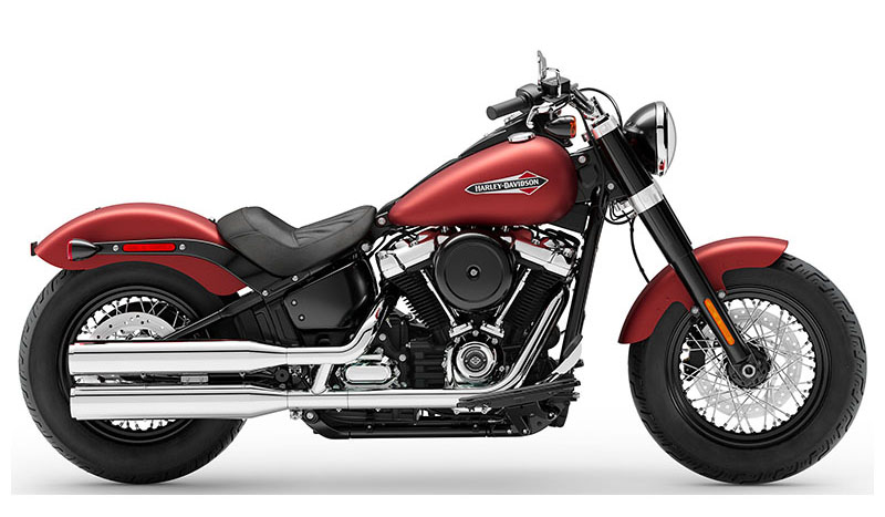 2019 Harley-Davidson Softail Slim® in Monroe, Louisiana