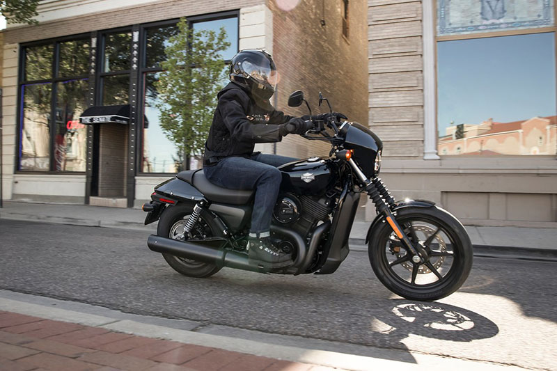 2019 Harley-Davidson Street® 500 in Pittsfield, Massachusetts