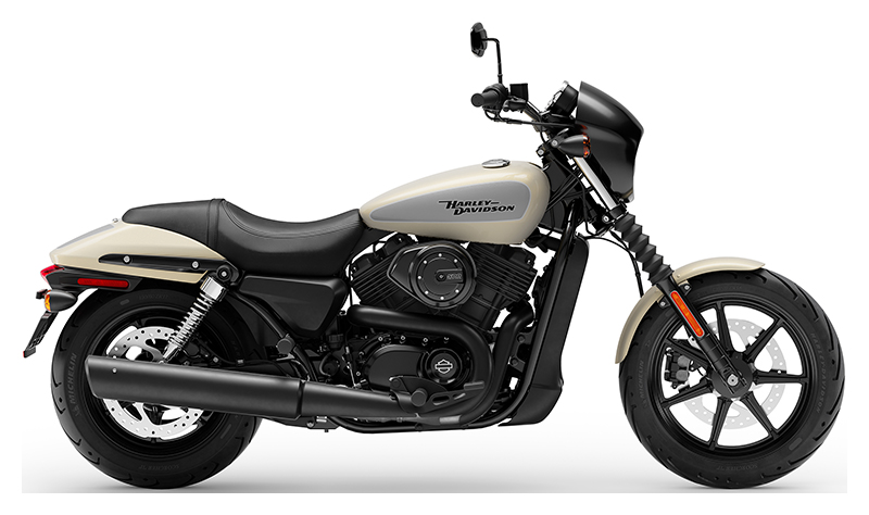 2019 Harley-Davidson Street® 500 in Fairbanks, Alaska - Photo 1