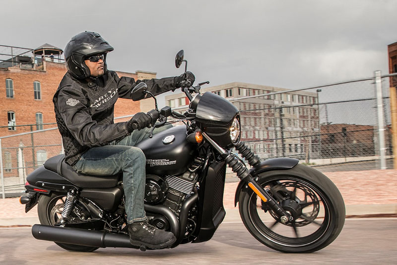 2019 Harley-Davidson Street® 500 in Leominster, Massachusetts