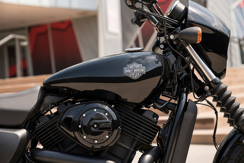 2019 Harley-Davidson Street® 500 in Jacksonville, North Carolina