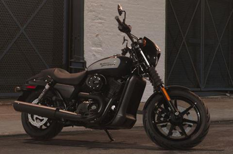 2019 Harley-Davidson Street® 500 in Greensburg, Pennsylvania