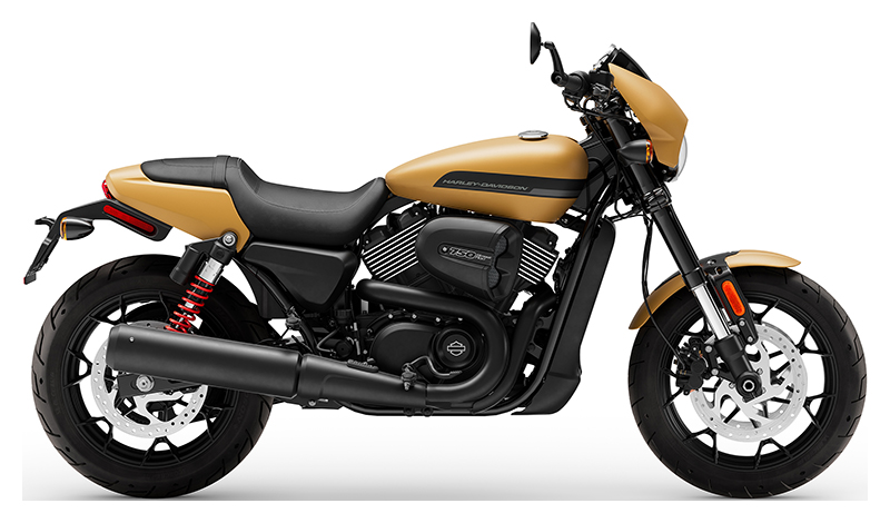 2019 Harley-Davidson Street Rod® in Wilmington, North Carolina