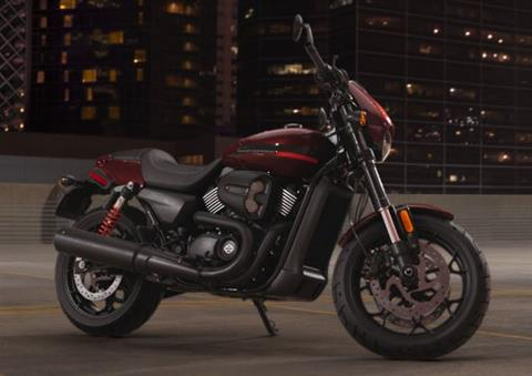 2019 Harley-Davidson Street Rod® in Pittsfield, Massachusetts