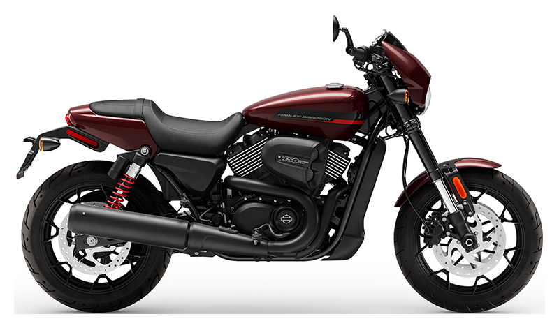 2019 Harley-Davidson Street Rod® in Scott, Louisiana