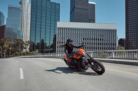 2020 Harley-Davidson FXDR™ 114 in South Charleston, West Virginia - Photo 10