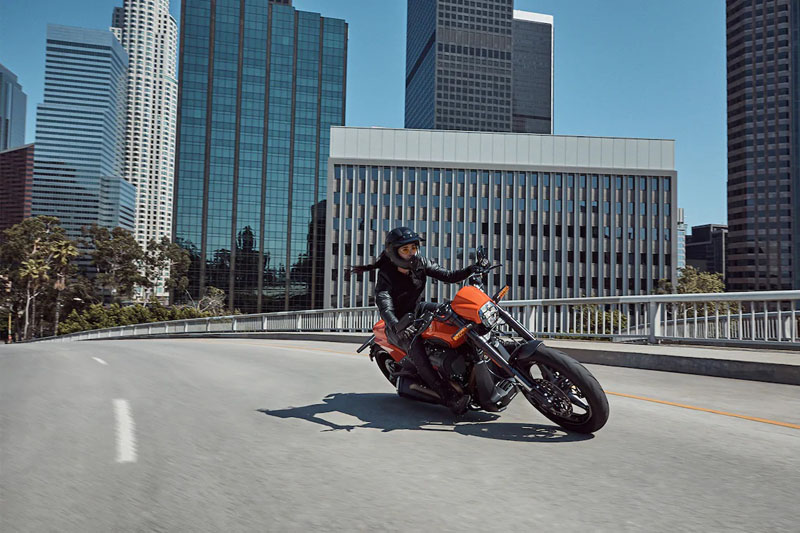 2020 Harley-Davidson FXDR™ 114 in South Charleston, West Virginia - Photo 11