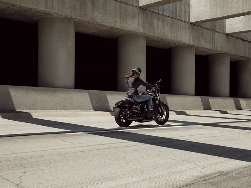 2020 Harley-Davidson Iron 1200™ in Triadelphia, West Virginia