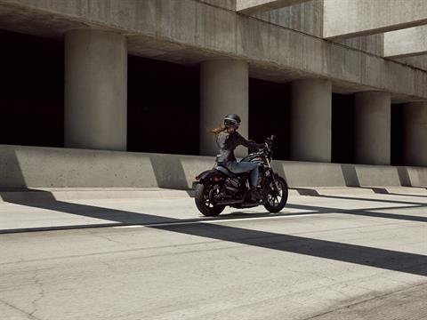 2020 Harley-Davidson Iron 1200™ in South Charleston, West Virginia - Photo 6