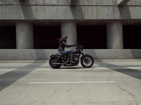 2020 Harley-Davidson Iron 1200™ in South Charleston, West Virginia - Photo 9