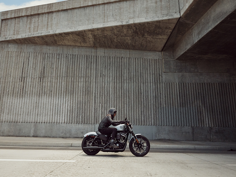 2020 Harley-Davidson Iron 883™ in Michigan City, Indiana