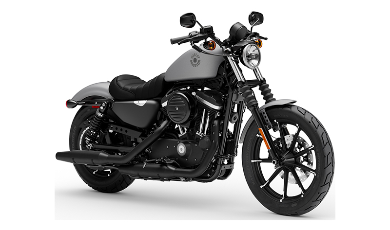 2020 Harley-Davidson Iron 883™ in Williamstown, West Virginia - Photo 3