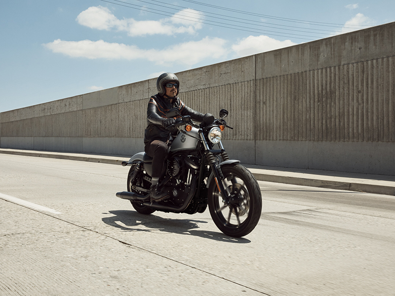 2020 Harley-Davidson Iron 883™ in Portage, Michigan