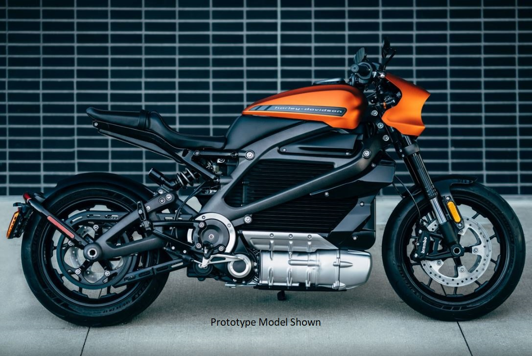 2020 Harley-Davidson Livewire™ in Waterford, Michigan