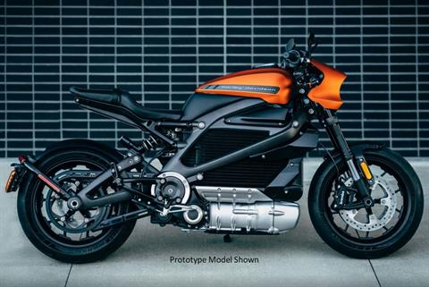 2020 Harley-Davidson Livewire™ in Junction City, Kansas