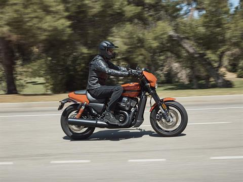 2020 Harley-Davidson Street Rod® in Pittsfield, Massachusetts - Photo 7