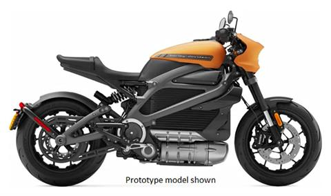 2020 Harley-Davidson Livewire™ in Johnstown, Pennsylvania