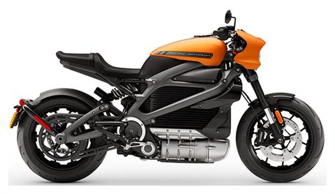 2020 Harley-Davidson Livewire™ in Leominster, Massachusetts