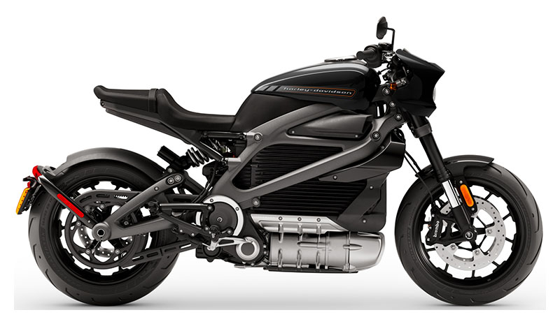 2020 Harley-Davidson Livewire™ in New York, New York - Photo 1