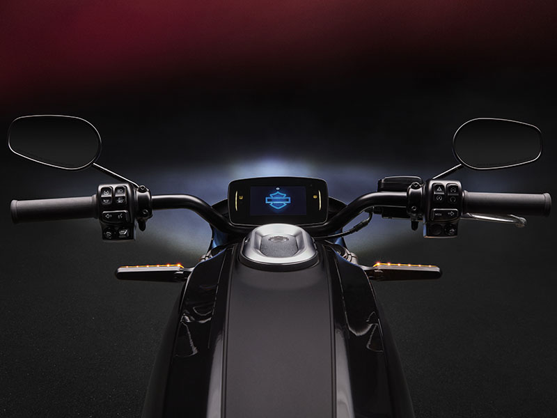 2020 Harley-Davidson Livewire™ in New York, New York - Photo 9