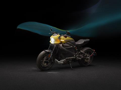 2020 Harley-Davidson Livewire™ in Portage, Michigan - Photo 8