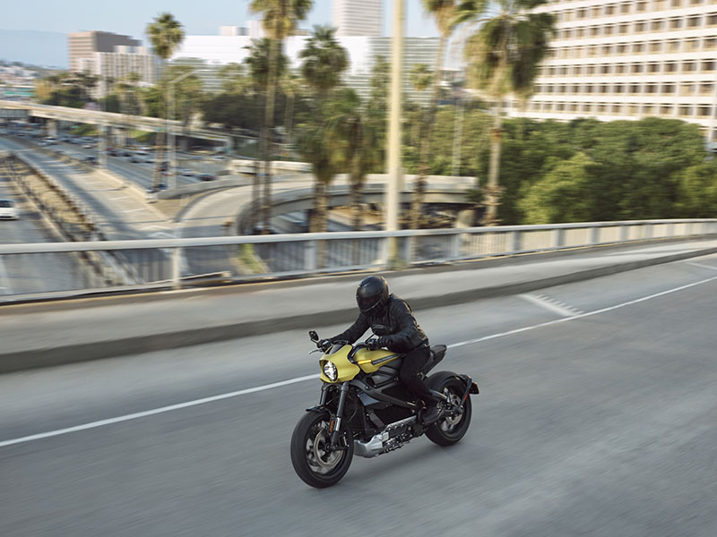 2020 Harley-Davidson Livewire™ in Sarasota, Florida - Photo 20