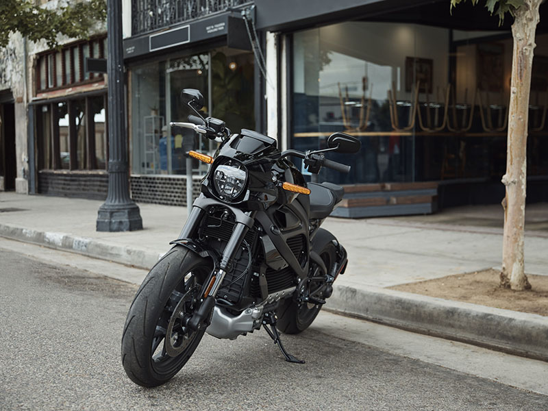2020 Harley-Davidson Livewire™ in New York Mills, New York - Photo 14