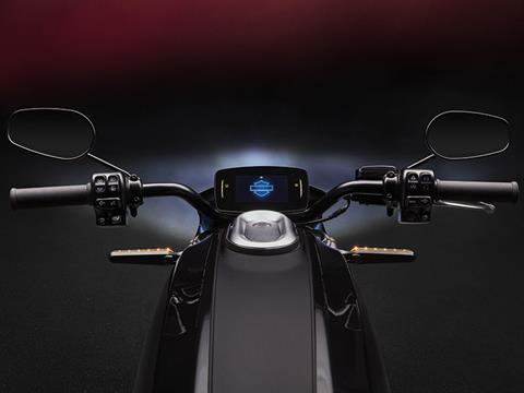 2020 Harley-Davidson Livewire™ in Dumfries, Virginia - Photo 10