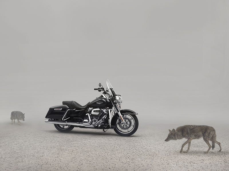 2020 Harley-Davidson Road King® in Fairbanks, Alaska - Photo 6