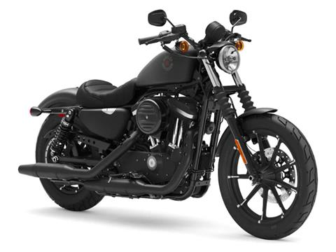 2021 Harley-Davidson Iron 883™ in Ukiah, California - Photo 3