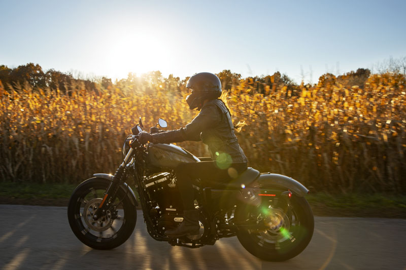 2021 Harley-Davidson Iron 883™ in Michigan City, Indiana - Photo 19