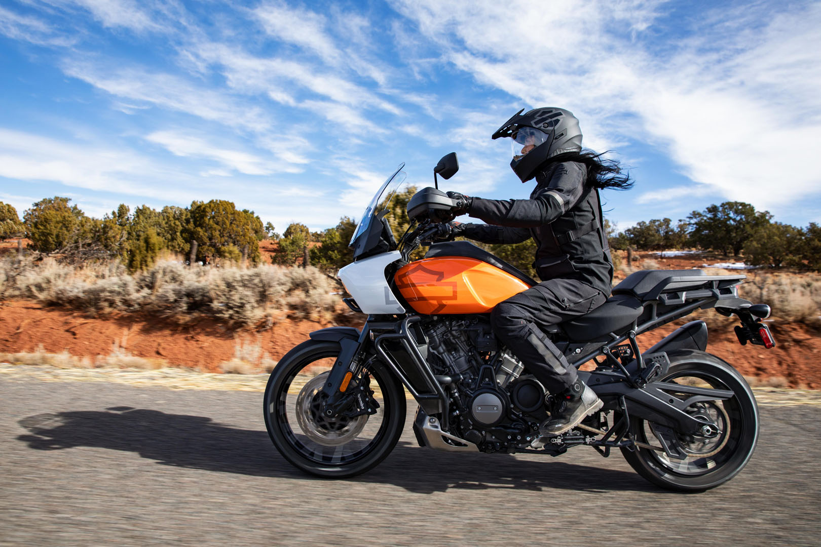 2021 Harley-Davidson Pan America™ Special in The Woodlands, Texas - Photo 19