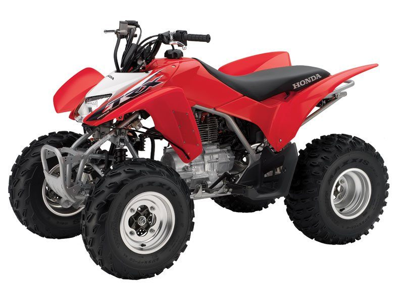 2014 Honda TRX®250X in Hicksville, New York - Photo 3