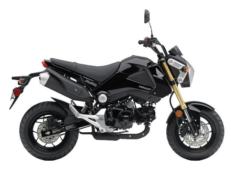 New 2014 Honda Grom® Motorcycles in North Reading, MA | Stock Number ...