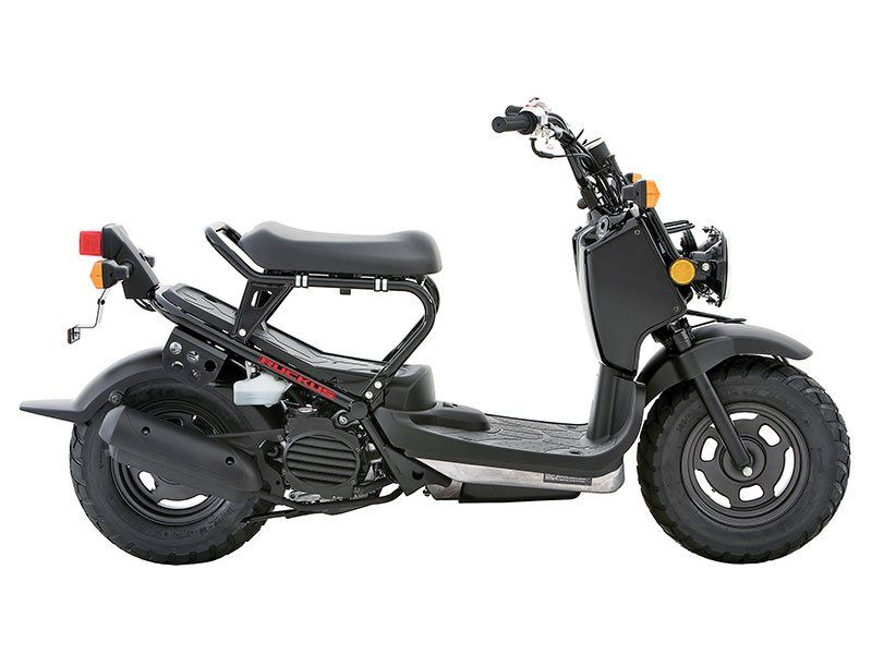 2014 Honda Ruckus® in Warren, Michigan