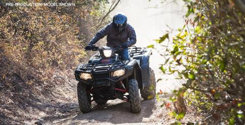 2015 Honda FourTrax® Foreman® Rubicon® 4x4 in Dillon, Montana