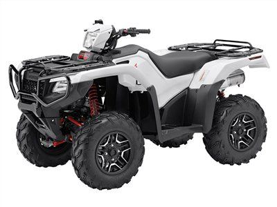 2015 Honda FourTrax Foreman Rubicon 4x4 EPS Deluxe in Harrisburg, Illinois