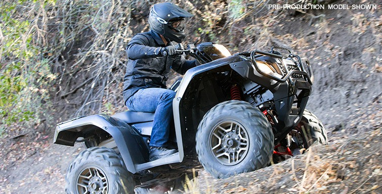 2015 Honda FourTrax Foreman Rubicon 4x4 EPS Deluxe in Warren, Michigan