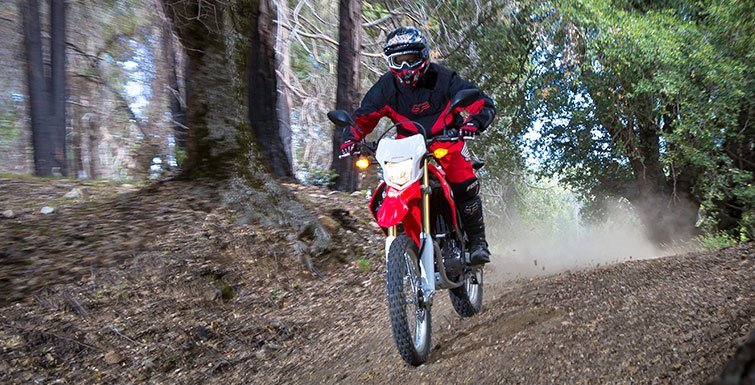 2015 Honda CRF®250L in Shelby, North Carolina - Photo 13