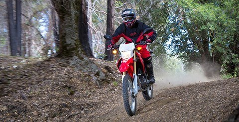 2015 Honda CRF®250L in Sumter, South Carolina