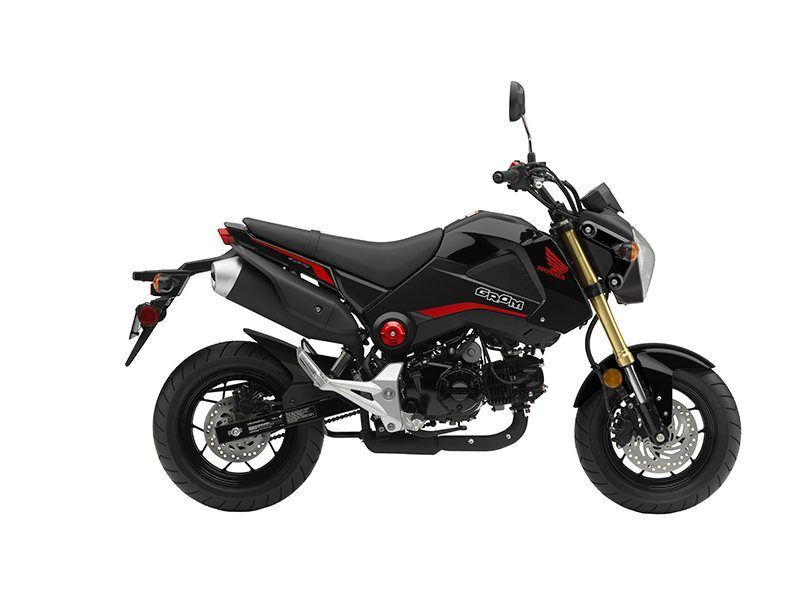 2015 Honda Grom® in North Reading, Massachusetts - Photo 1