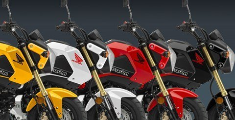 2015 Honda Grom® in Ithaca, New York