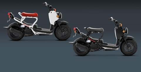 2015 Honda Ruckus® in Berkeley, California