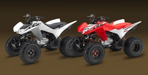2016 Honda TRX250X in Orange, California