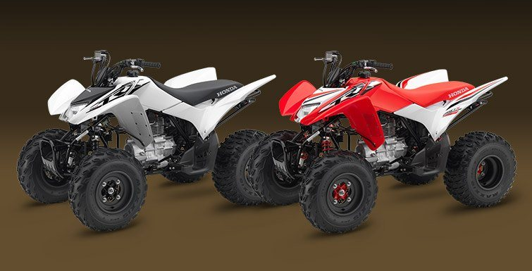 2016 Honda TRX250X SE in Arlington, Texas