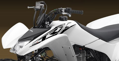 2016 Honda TRX250X SE in Beckley, West Virginia