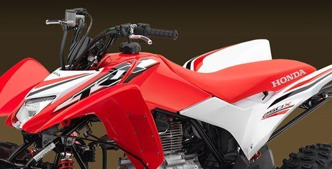 2016 Honda TRX250X SE in Shelby, North Carolina