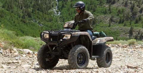 2016 Honda FourTrax Foreman 4x4 ES Camo in Ottawa, Ohio