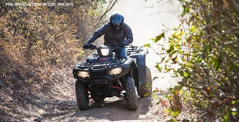 2016 Honda FourTrax Foreman Rubicon 4x4 Automatic DCT EPS Deluxe in Fontana, California